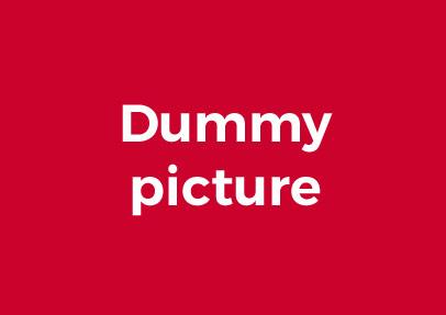 dummypic
